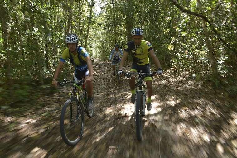 Parque do Pau Brasil é estruturado para receber mais turistas
