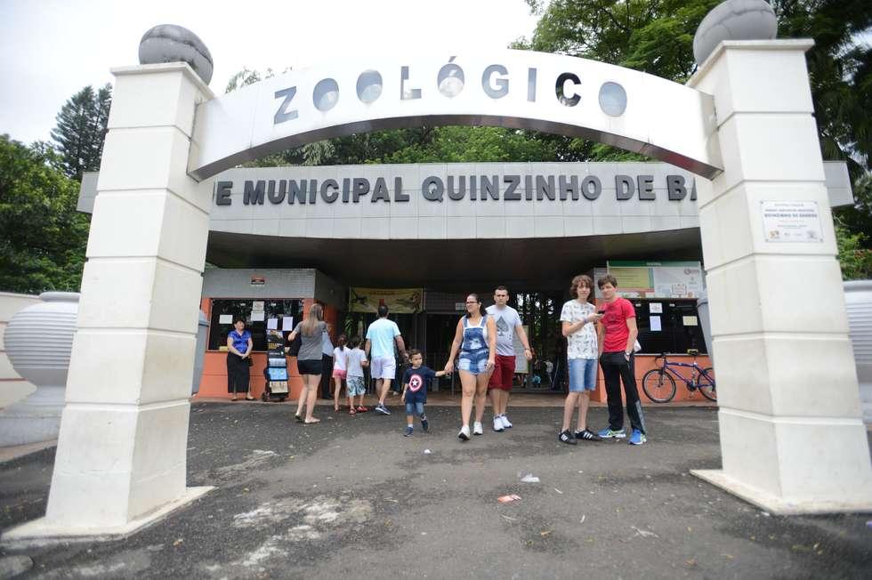 Votação escolhe nome de onça-pintada do zoo