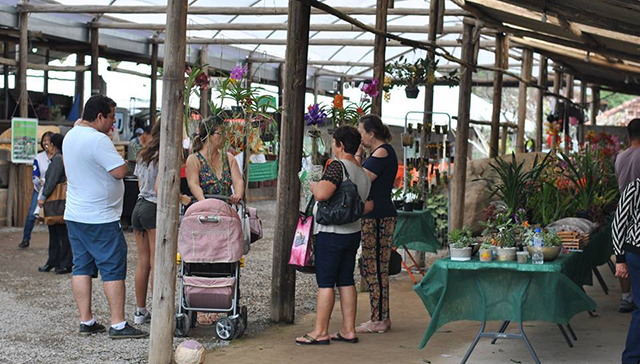 Festival de Orquídeas