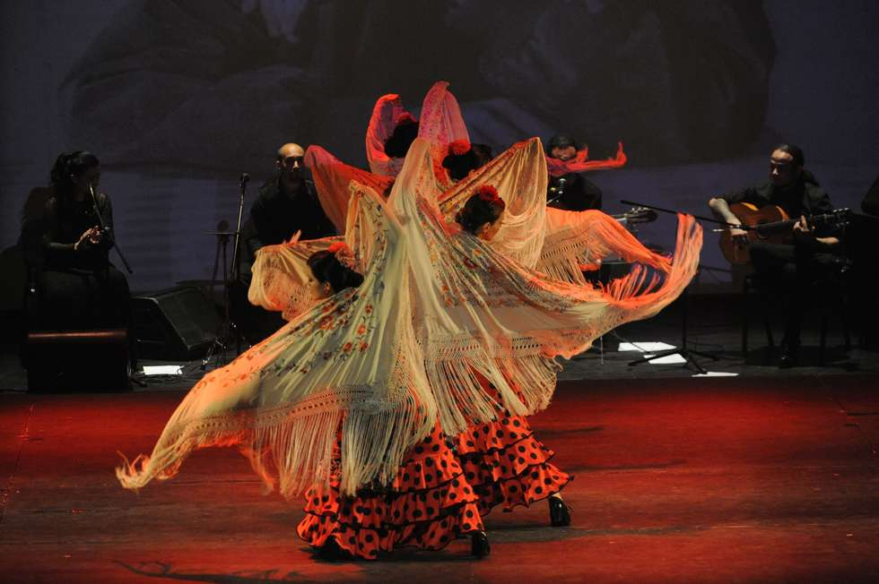'Camarón, flamenco después de ti'