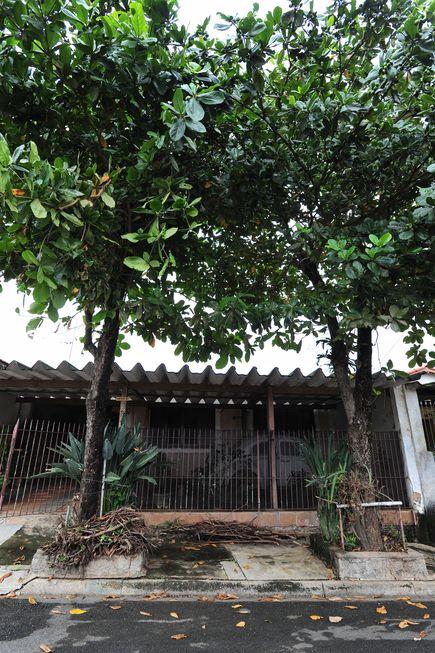 Árvores no Cajuru causam preocupação