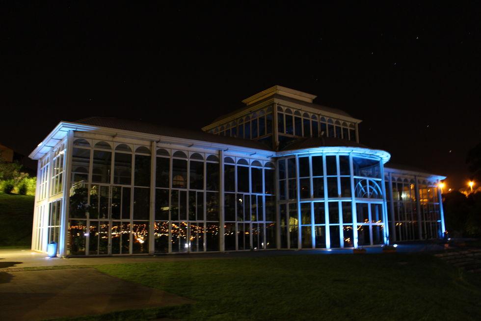 Jardim Botânico ganha coleção de bambus