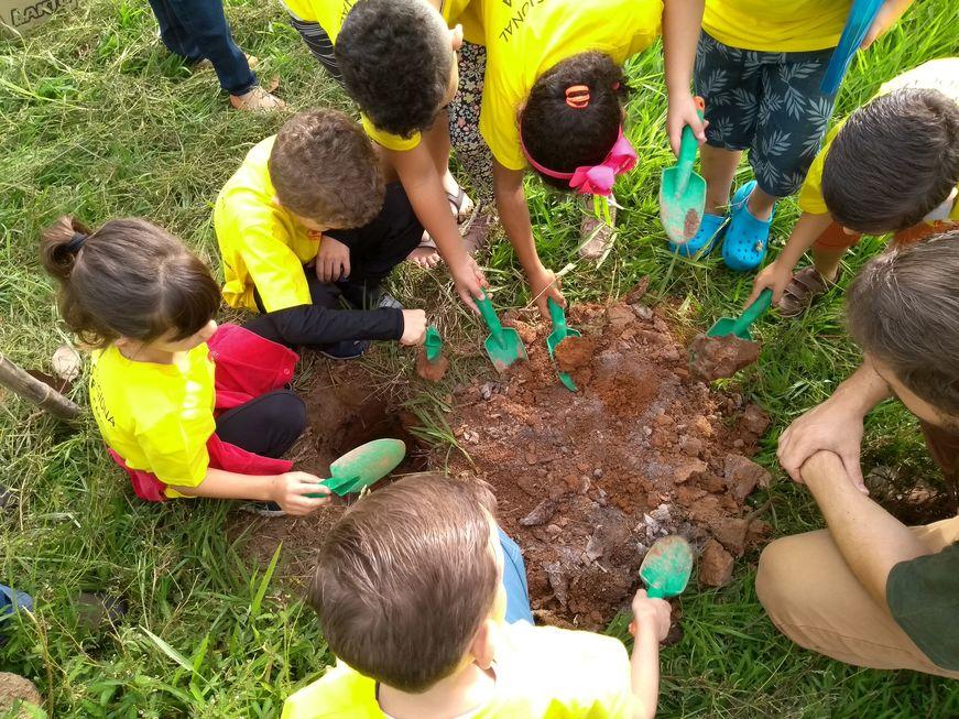 Crianças dão exemplo plantando árvores