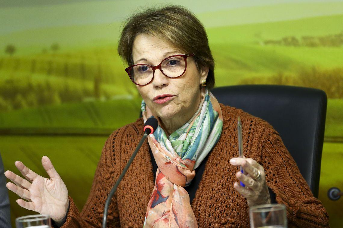 A ministra da Agricultura, Pecuária e Abastecimento, Tereza Cristina.