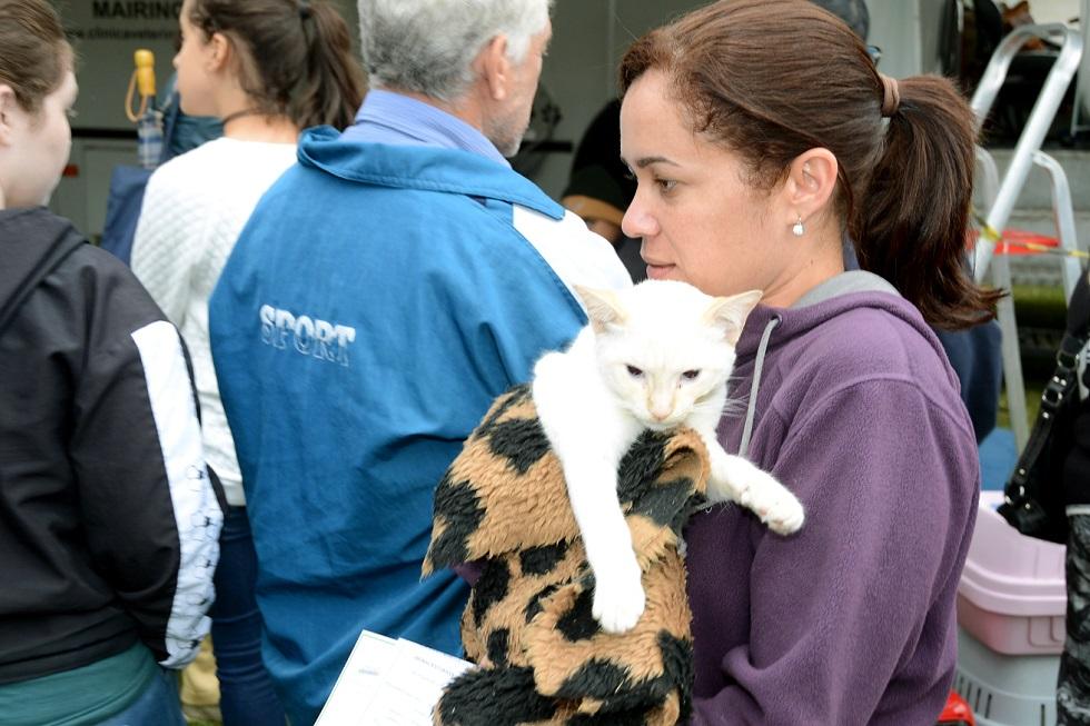 Inscrição para castração gratuita de cães e gatos tem início nesta quarta-feira