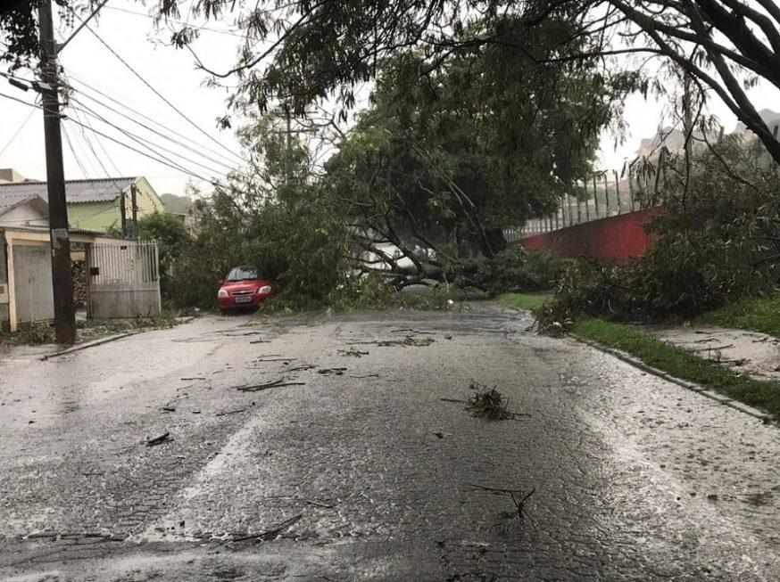 Vento derruba árvores e danifica imóveis na zona sul de Sorocaba