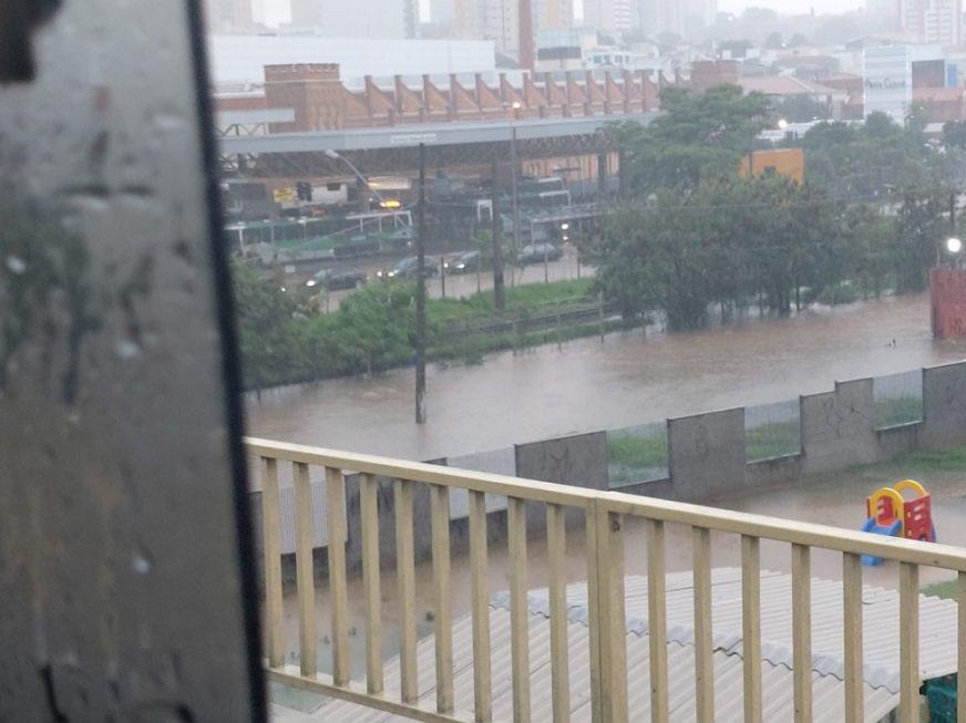 Chuva provoca alagamentos e causa queda de árvore em Sorocaba