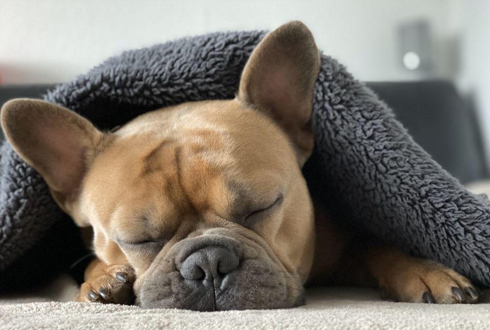 Gripe é doença característica do frio
