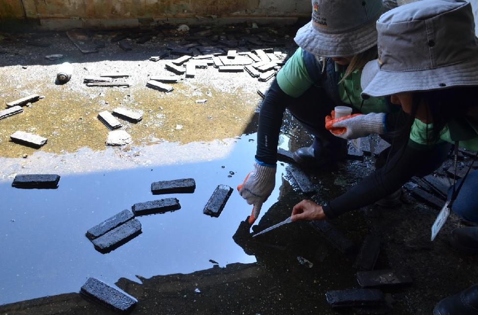 Casos de dengue em Sorocaba aumentam 20% em 15 dias