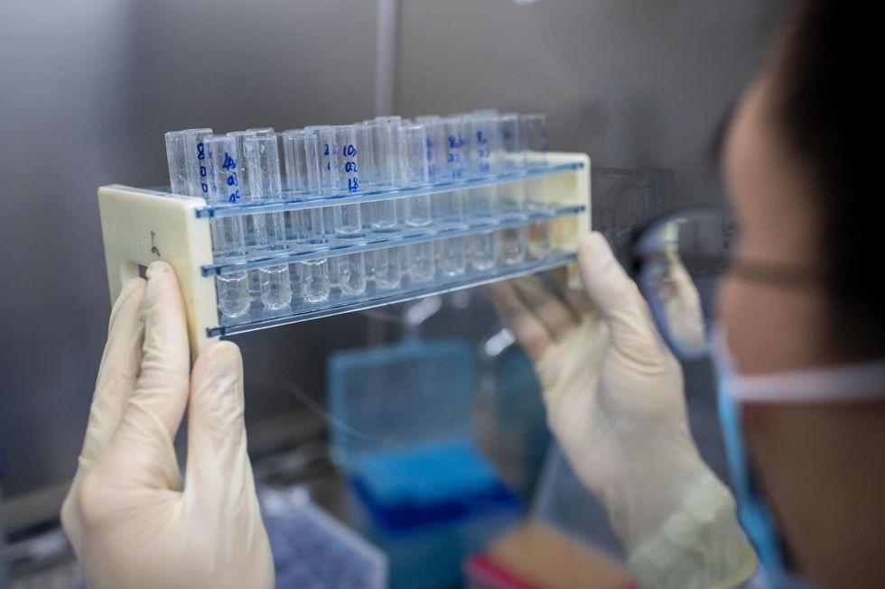 Federais conduzem mais de 800 pesquisas sobre Covid-19
