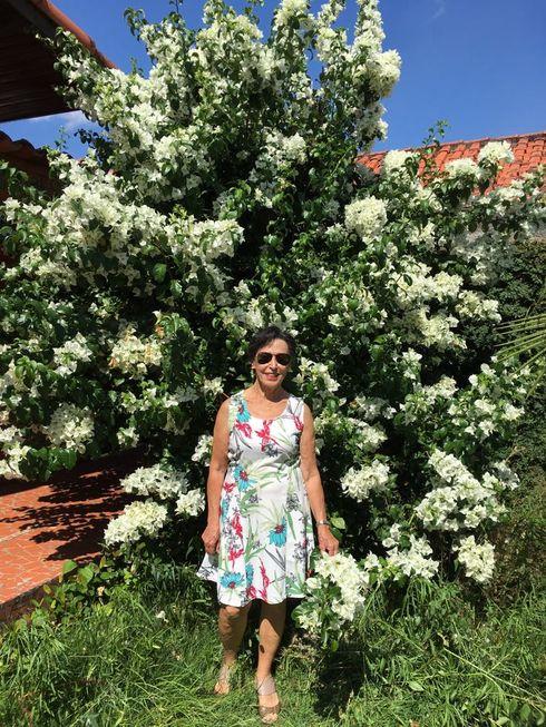 Presença: Meu jardim florido