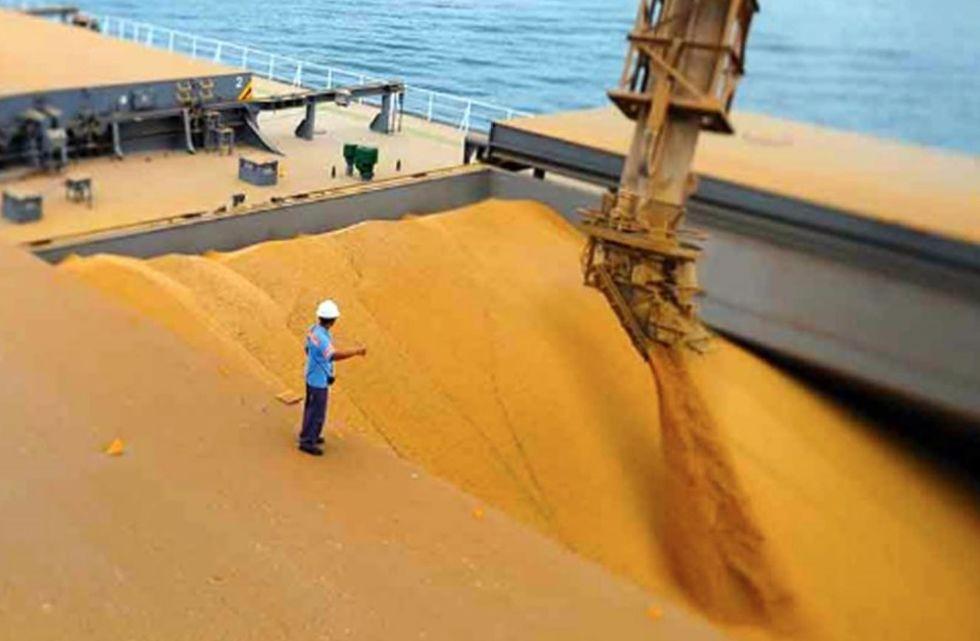 o agronegócio brasileiro é um dos mais representativos do mundo, especialmente em exportações