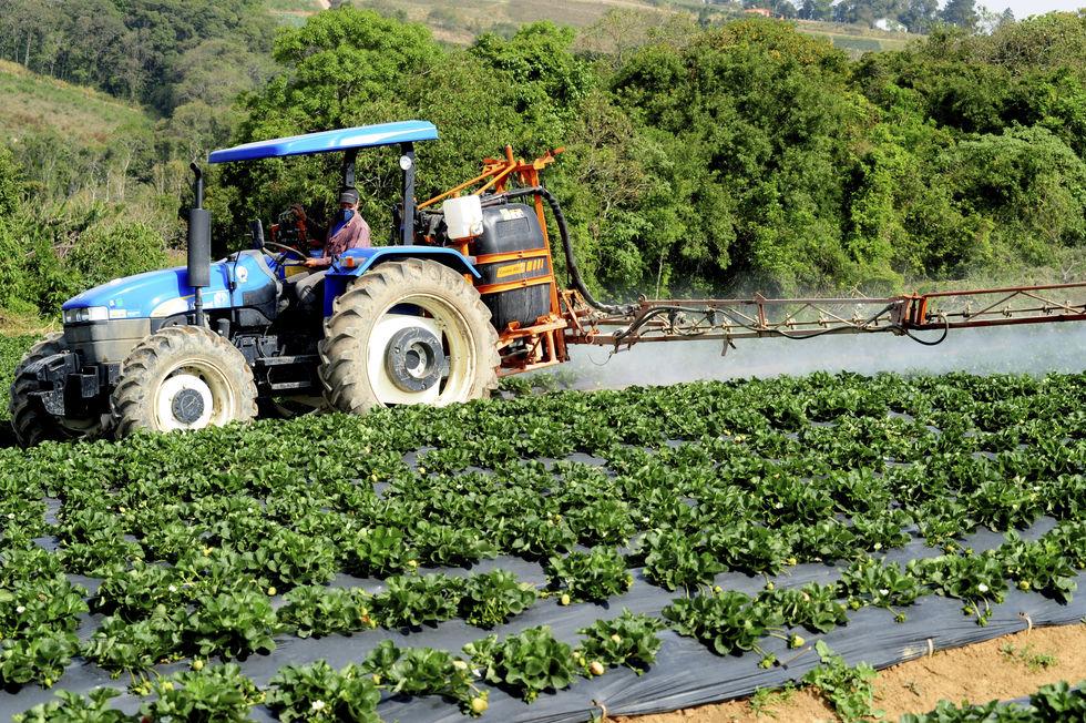 Agronegócio puxa criação de empregos