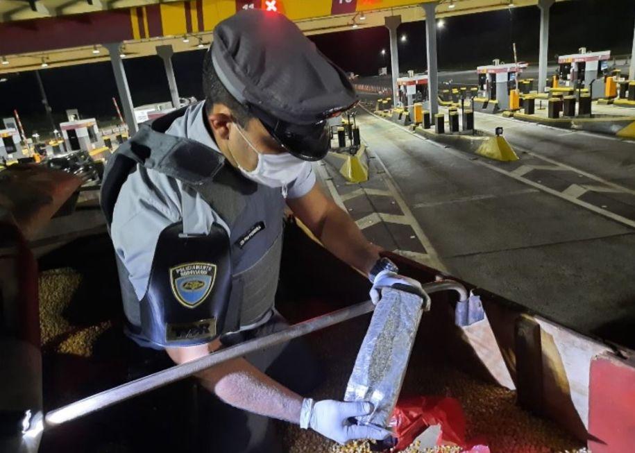 Polícia Rodoviária apreende 8,2 toneladas de maconha