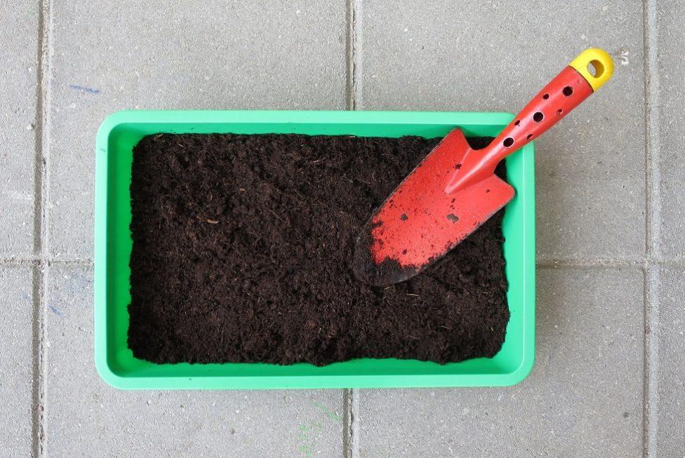 Atividade on-line ensina a fazer horta em pequenos espaços