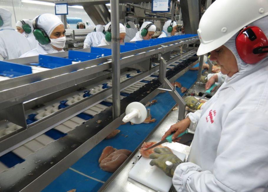 ABPA não vê critério para Filipinas cortarem importação de frango