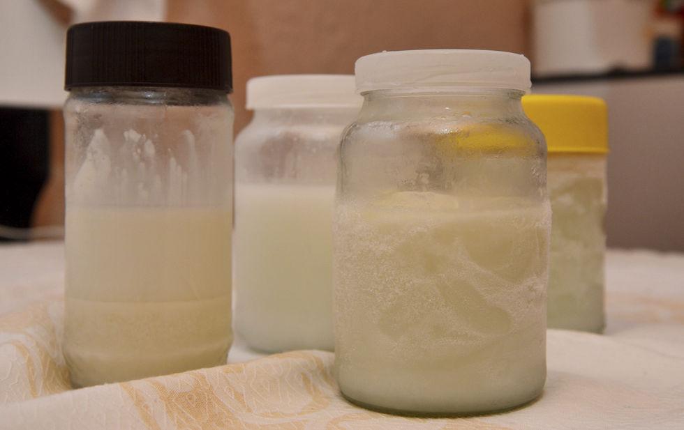 Doação de leite humano continua segura