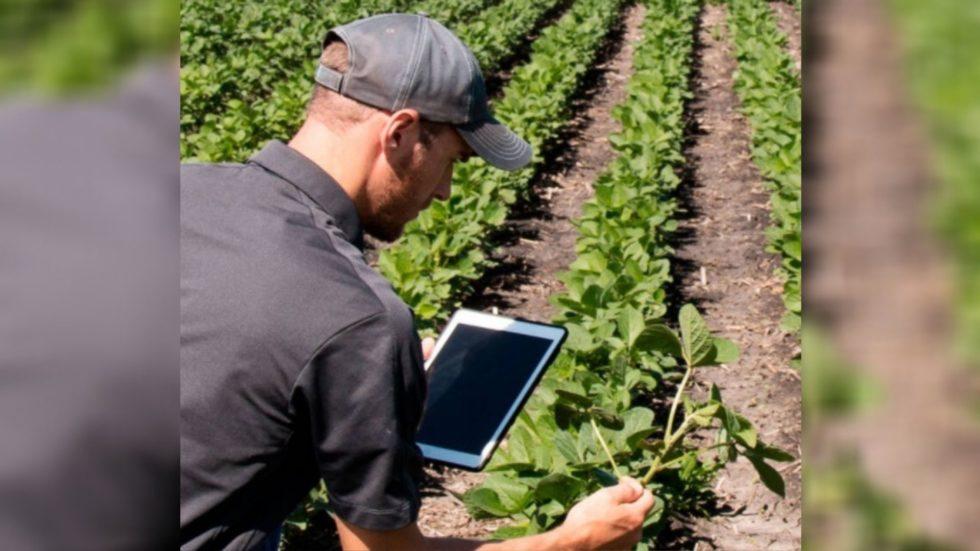 Facebook cria no Brasil programa de aceleração de startups focado em agricultura