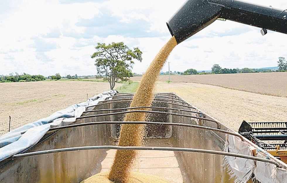 IBGE: safra será de 252 milhões de toneladas