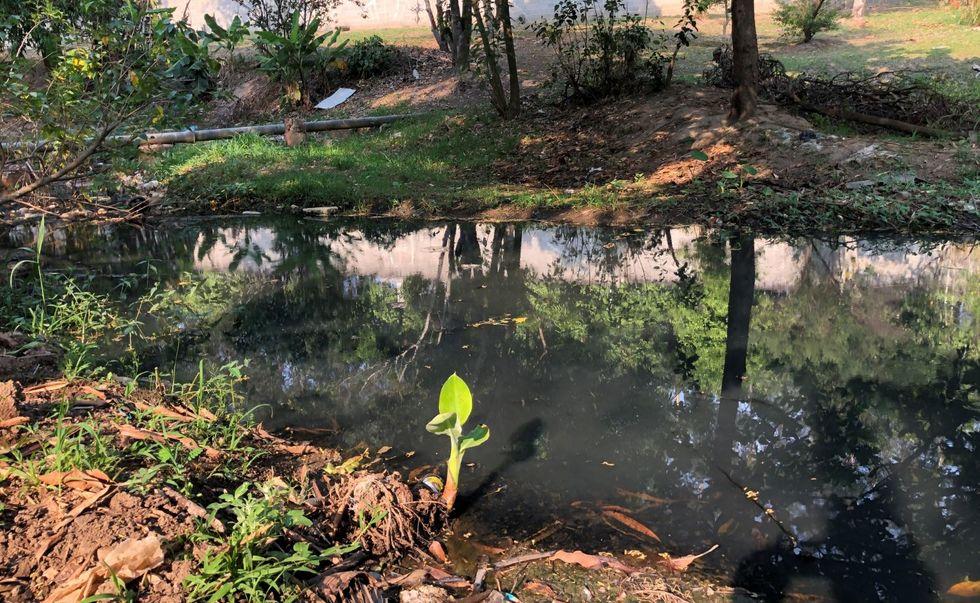 MP-SP investiga poluição do rio Pirajibu
