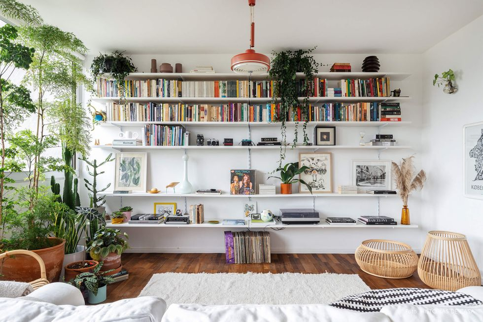 Quadros e plantas são aliados valiosos da decoração