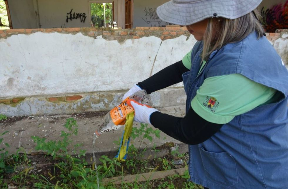 Densidade Larvária coloca Sorocaba em situação de alerta para dengue