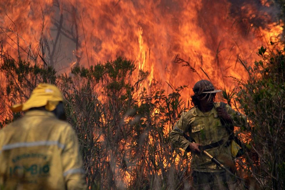 Bahia decreta emergência em 73 municípios