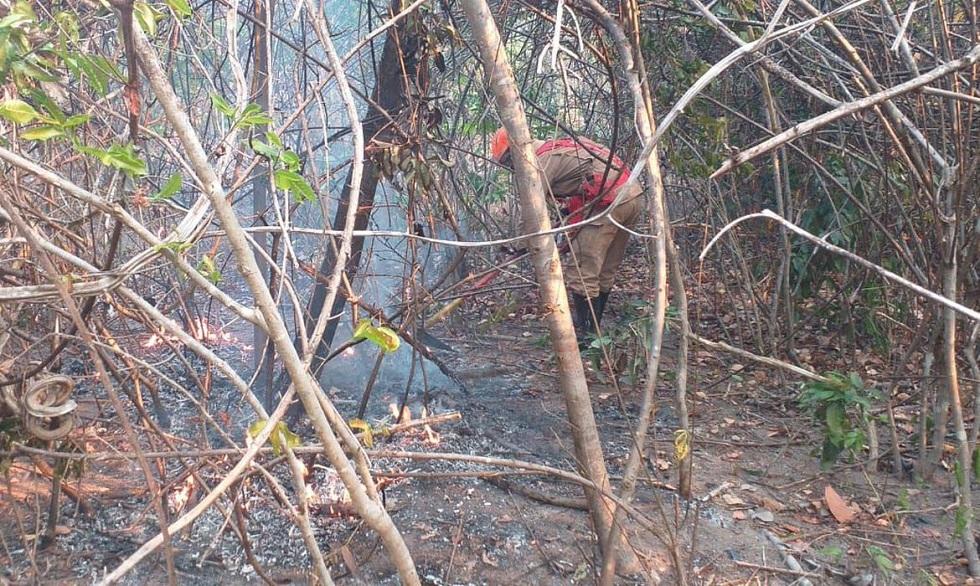 Maior parte do incêndio na Chapada dos Veadeiros é controlada