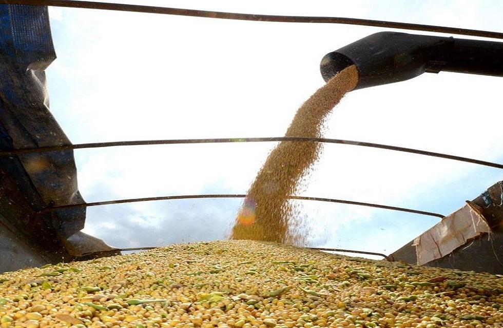 Soja deve atingir recorde de exportações, com 85,6 milhões de toneladas.