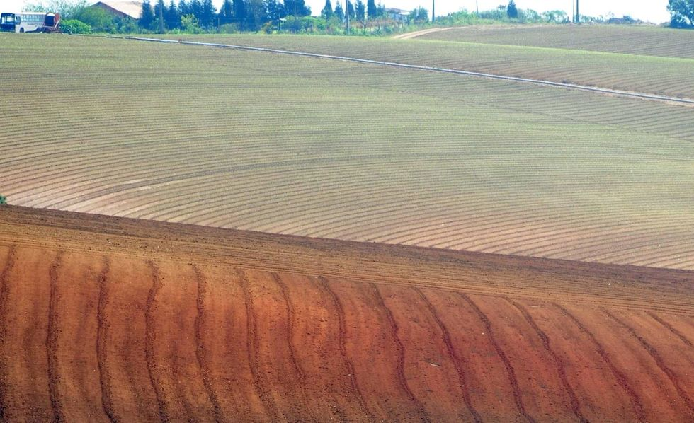 Senado aprova PL que facilita compra de terras por estrangeiros