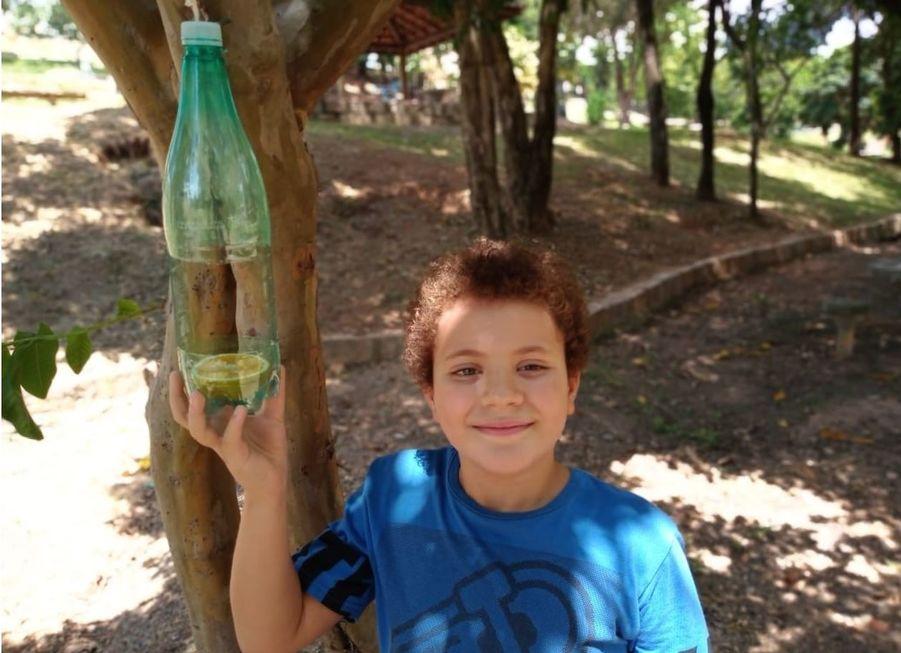 A curiosidade das crianças desvenda o mundo dos pássaros