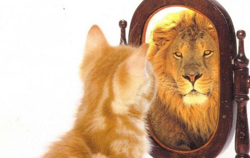 A importância de gostar de si mesmo