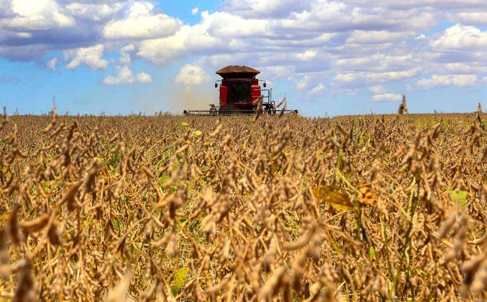 """Mundo precisa saber que o """"agronegócio brasileiro cresce de maneira sustentável"""""""