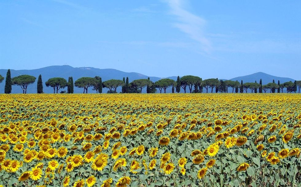 Entre Toscana e Emilia-Romagna