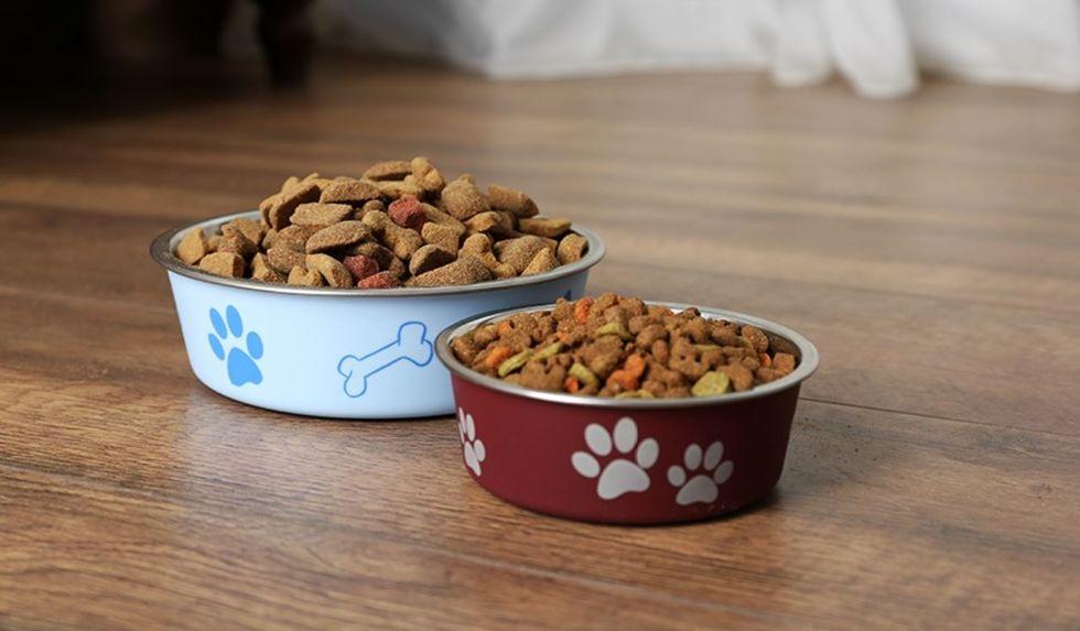 Quais os nutrientes ideais para o seu pet?