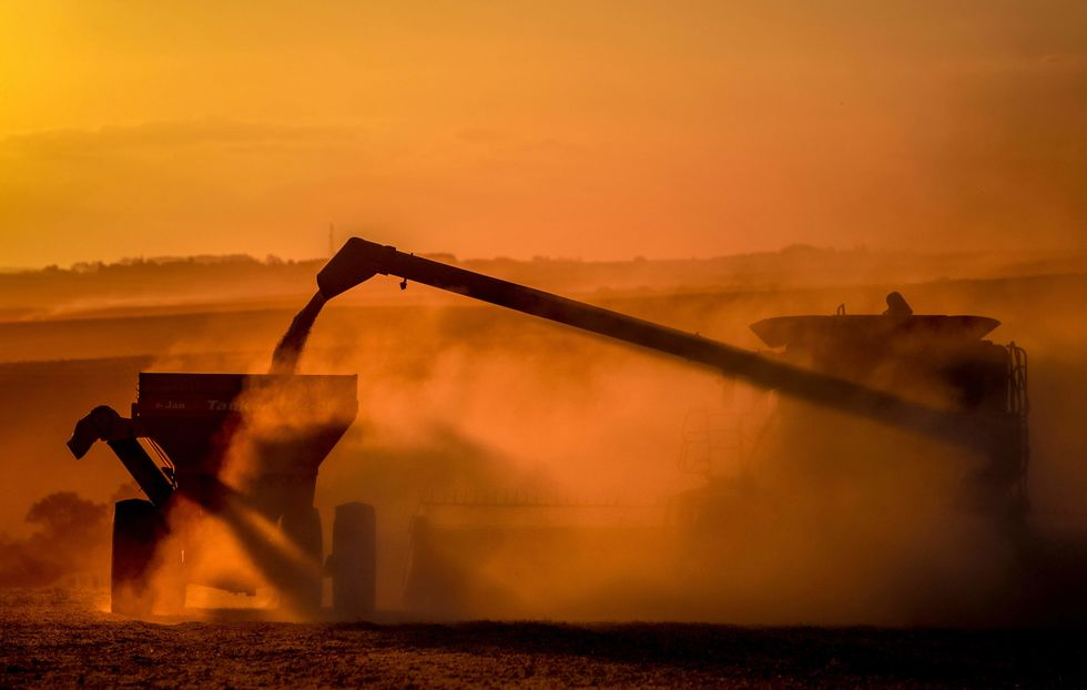 Safra será recorde de 264,9 milhões de toneladas
